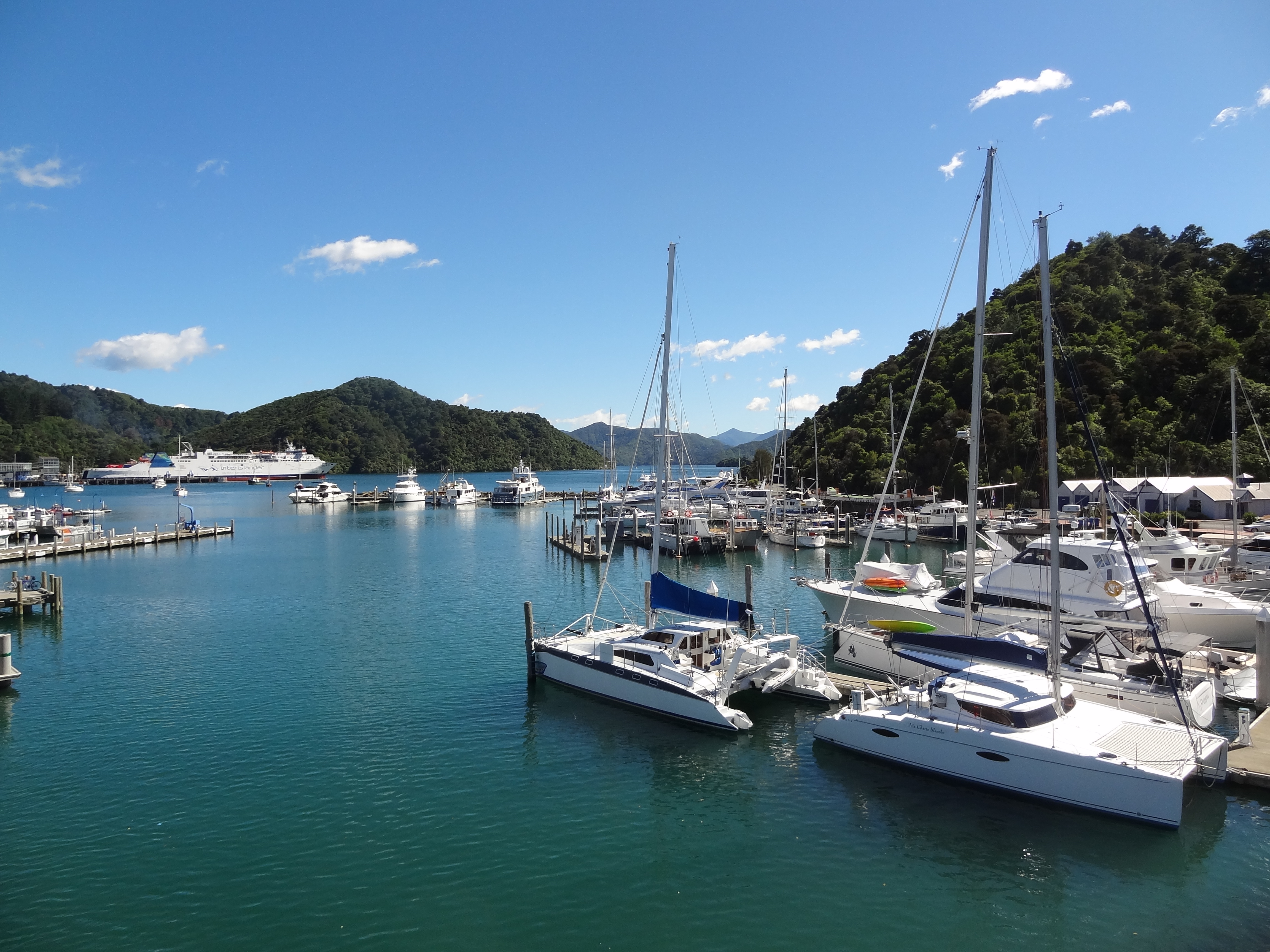 Picton, not the scruffy port town we had half expected. The big boat on the far side is one of the inter-island ferries.