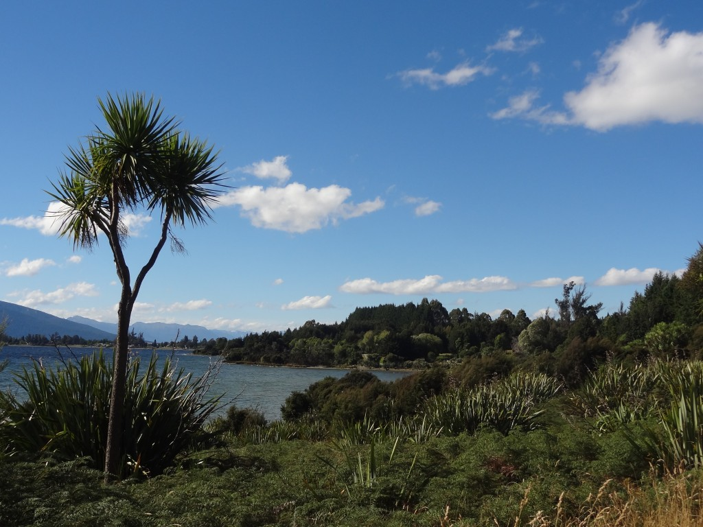 We spent our first day walking around Te Anau Lake to the Control Gates