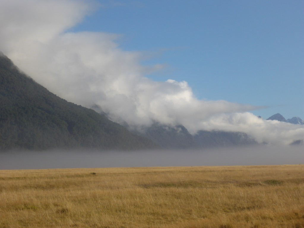 Ellington Valley - a huge glacial valley with steep rock sides and a wide flat golden tussock floor