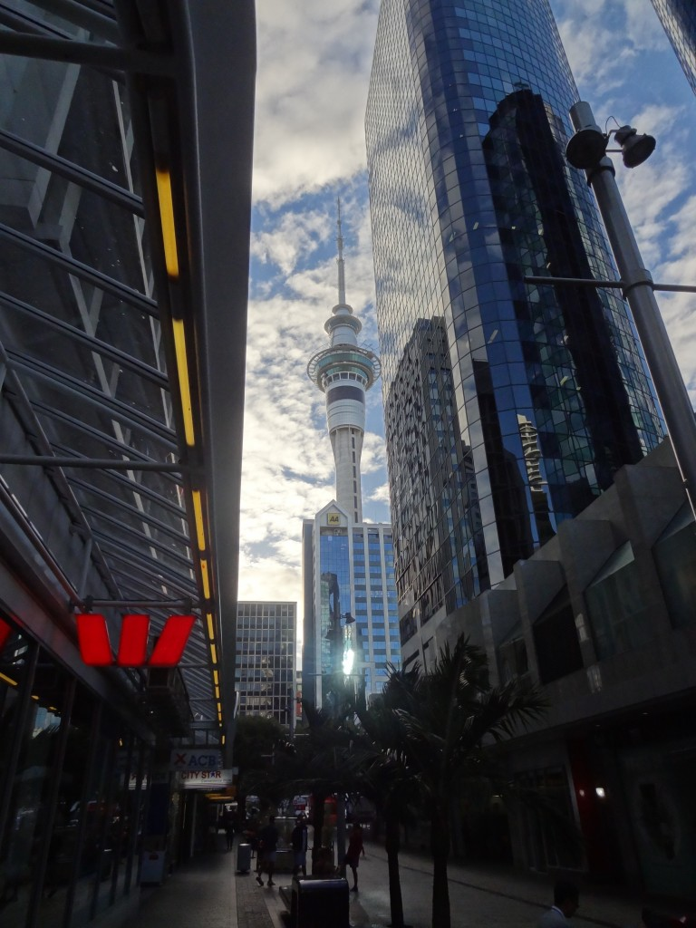 The iconic Sky Tower - folk visit Auckland just to throw themselves off this building